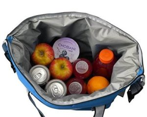 inside collapsible bag cooler